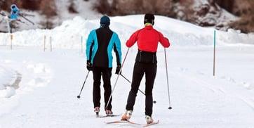 cross-country-skiing-3020751_1280